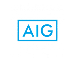 AIG clients hybot system